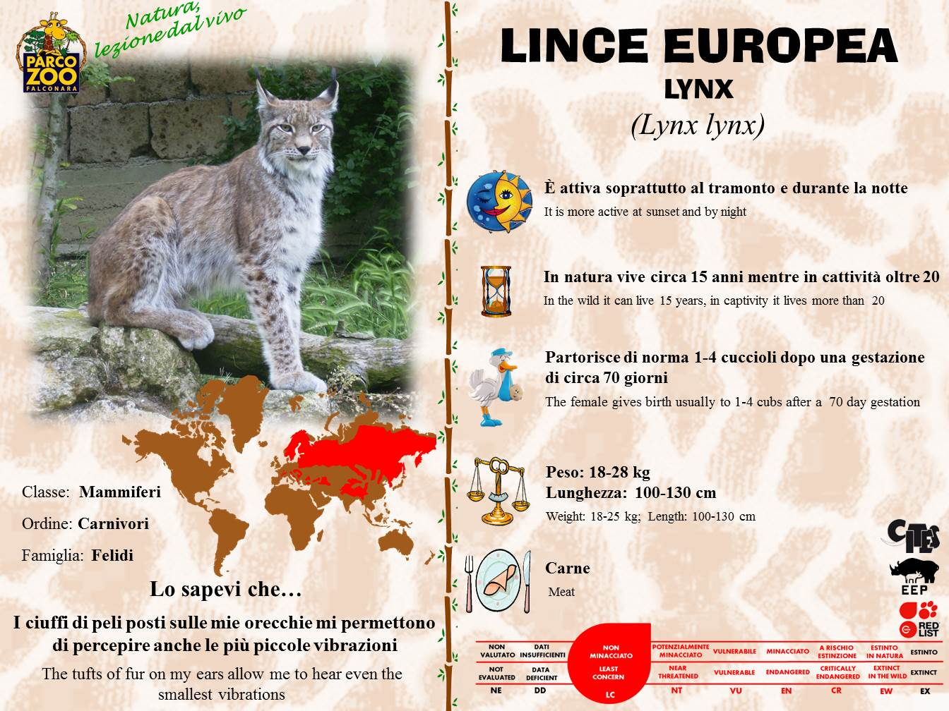 Lince2014