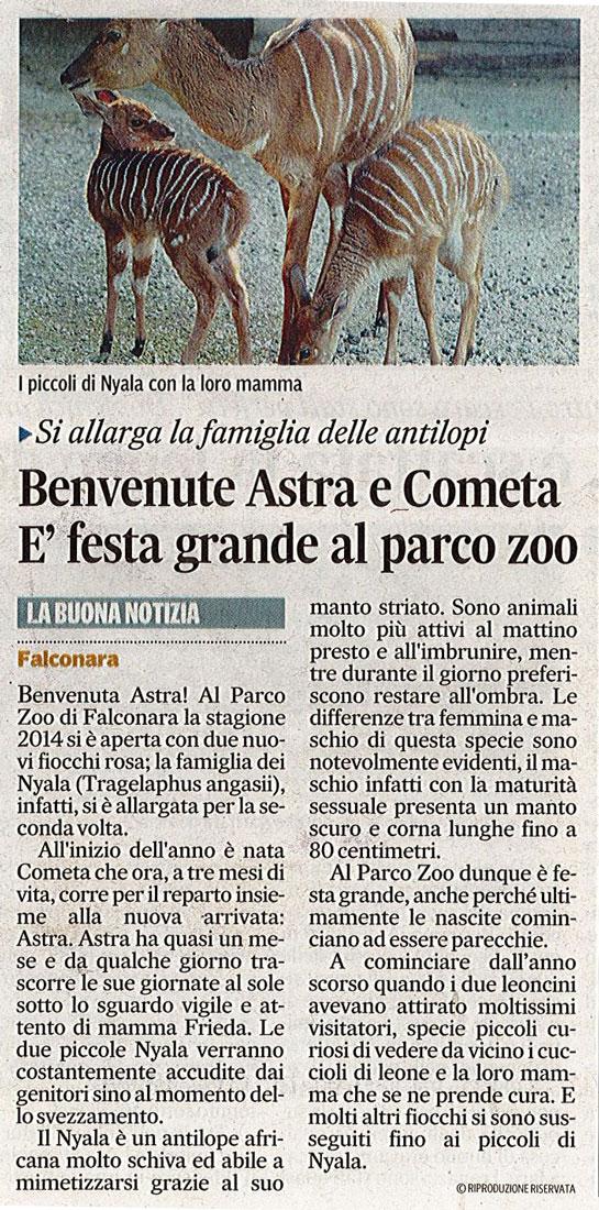 Corriere Adriatico<br>03 aprile 2014