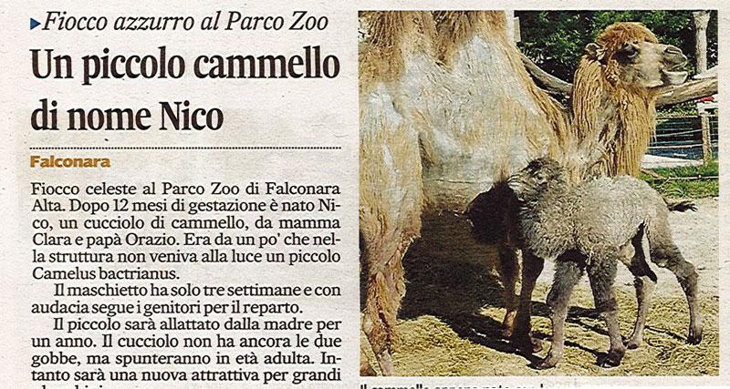 Corriere Adriatico<br>07 maggio 2014