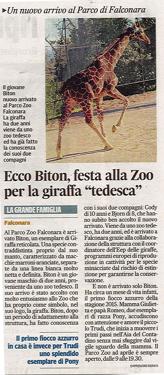 Corriere Adriatico<br>02 aprile 2015