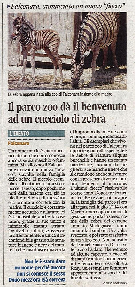 Corriere Adriatico<br>04 giugno 2015
