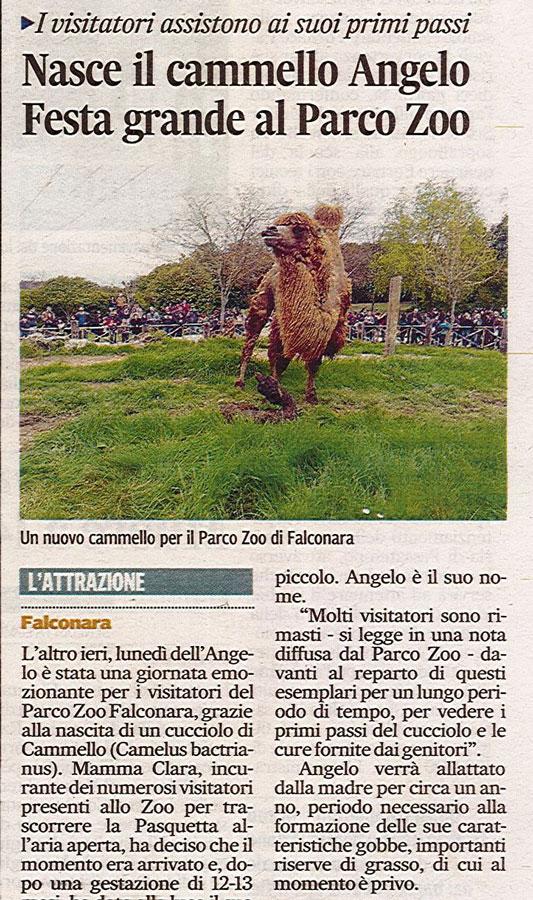 Corriere Adriatico<br>30 marzo 2016