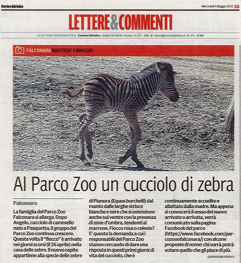 Corriere Adriatico<br>4 maggio 2016
