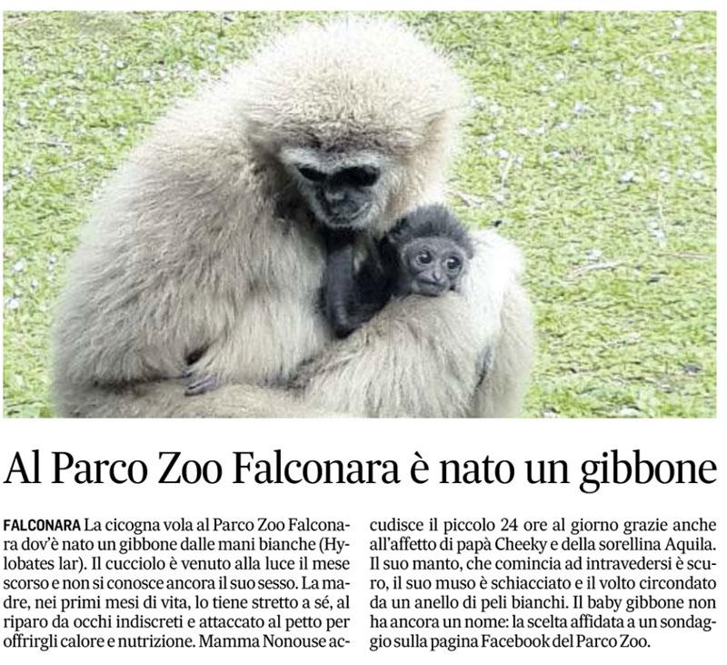 Corriere Adriatico 11 marzo 2017