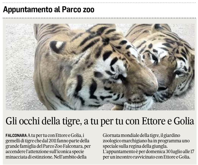 Corriere Adriatico 29 luglio 2017