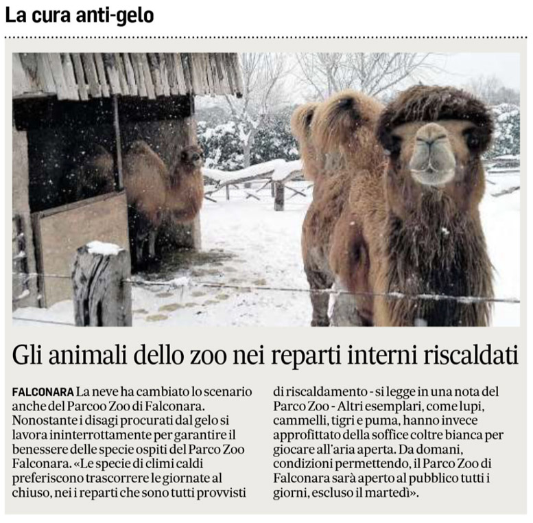 Corriere Adriatico 28 febbraio 2018